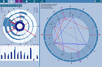 ChartAnalyzer. The natal chart analysis